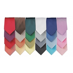 Premier Men's Colours Fashion Tie